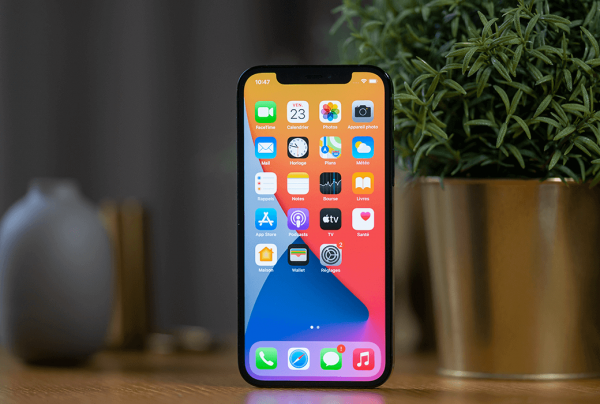 IPhone 12 pro review photo